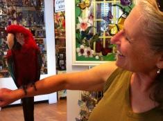 Friendly bird with birder