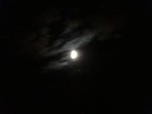 Wispy Half Moon