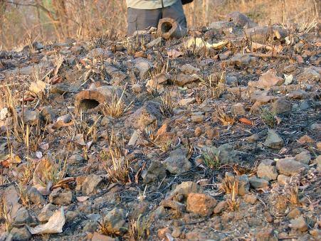 Remnants of smelting kiln