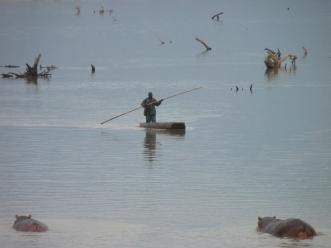 Perilous fishing near hippos